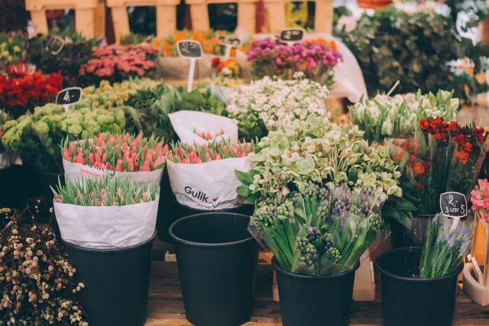 花を捨てる覚悟(花を自ら処分する)